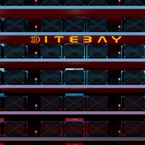 About bitebay